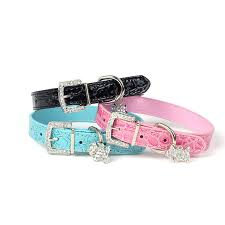 leather dog collar rhinestone puppy