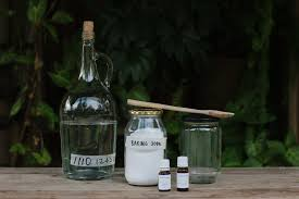 homemade spearmint teatree mouthwash