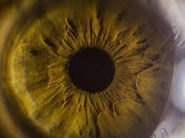 detached retina symptoms causes