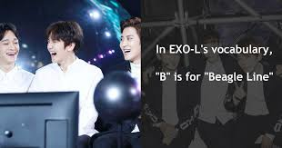 words and phrases every exo l should know koreaboo