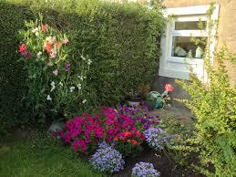 الحدائق المنزلية كيف تقوم بعمل حديقتك الخاصة وبكل بساطة روزبيديا