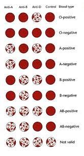 blood type test determine blood type