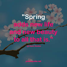 inspirational spring quotes pixels quote