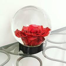 achla designs glass flower aquarium