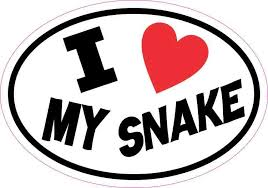 5inx3 5in Oval I Love My Snake Sticker Vinyl Animal Car Decal Cup Stickers Bumper Decals My Love Car Decals Vinyl