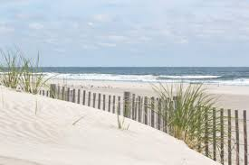 Amazon Com Photograph Of Sand Dunes With Beach Fence And The Ocean In The Distance Stone Harbor Dunes 3 Handmade