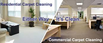 houghton new york best carpet cleaners