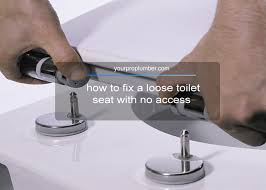 fix a loose toilet seat with no access