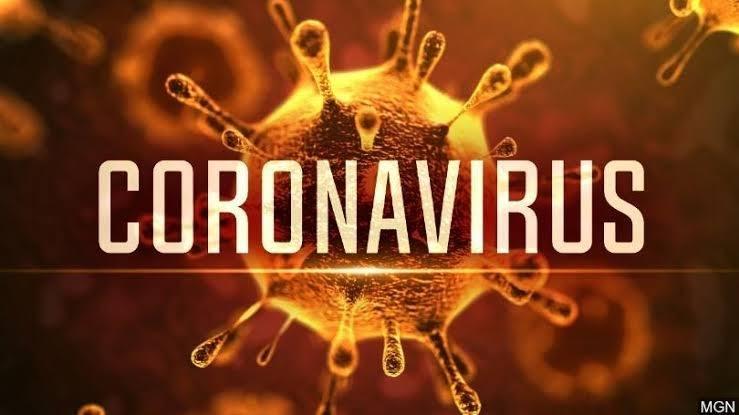 "Image result for Botswana Registers First Case Of Coronavirus"""