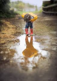 When it rains by Sonja Stone   Rain photography, Rain photo, Amazing nature  photography