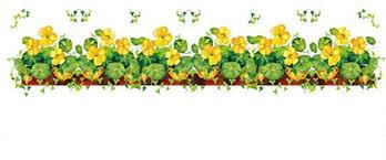 Garden Fence Art Green Clover Wall Sticker Yellow Flower Border Luck Plants Vinyl Decal Window Glass Door Decor Mural Amazon Co Uk Diy Tools