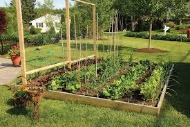 raised garden bed designs inspiration