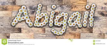 Daisy Name Abigail Wood Background Stock Illustration - Illustration of  color, custom: 85445931