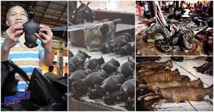 Pasar Tomohon Indonesia, Mirip Pasar Makanan Eksotik Di Wuhan China
