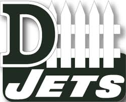 New York Jets D Fence Pin