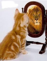 Porque nos vemos tan guapos en el espejo y tan feos en las fotos ...