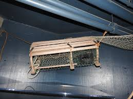 Lobster Trap – New Mexico BioPark Society