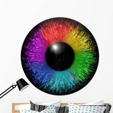 Rainbow Eye Wall Decal Wallmonkeys Com