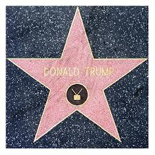 Donald Trump Hollywood Walk Of Fame Star Laminated Sticker Shirt Warehouse