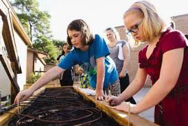 Woodlands school digs deep for gardening education - The Courier