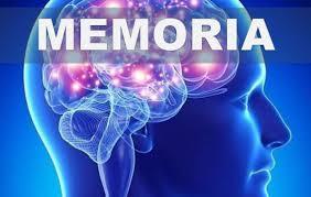 Cómo alimentar tu memoria. | Julio Guerra / Academias de Estudios ...