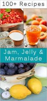 homemade jam jelly marmalade recipes