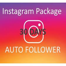 instagram-Followers-auto-30-tage kaufen