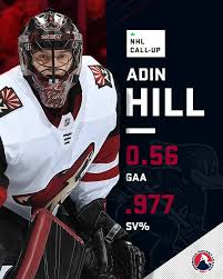AHL - With a sparkling .977 save percentage, Adin Hill is... | Facebook
