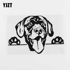 Yjzt 17 8cmx12 3cm Waterproof Decal Labrador Dog Peeking Vinyl Car Sticker Black Silver 8a 0080 Car Stickers Aliexpress