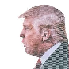 Ride With Donald Trump Funny Car Window Decal Sticker Walmart Com Walmart Com
