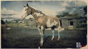 Overo American Paint Horse Rdr2 Red Dead Online Horses Database Statistics Red Dead Redemption 2