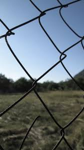 Free Images Artistic Creative Free Magic Retro Card Sky Nature Wire Fencing Chain Link Fencing Fence Water Field Tree Technology Branch Barbed Wire Mesh Twig Plant Net Metal 2592x4608 Valeryf