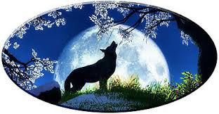 Full Color Wolf Moon Scene Decal Sticker Rv Travel Trailer Camper Motorcoach 56 00 Picclick