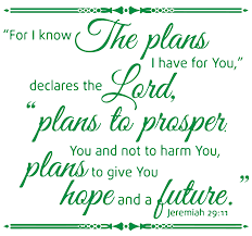 Jeremiah 29 11 For I Know The Plans I Have Vinyl Decal Sticker Quote Small Green Walmart Com Walmart Com