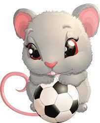 Chuột và những cách dân gian nhìn về chuột