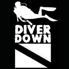 8 Inch Diver Down Flag Window Decal