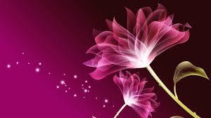 beautiful purple flower wallpapers for