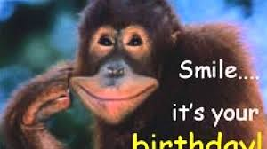 funny birthday wishes and messages wishesgreeting