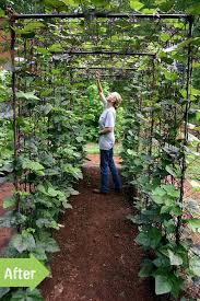 vegetable garden design diy