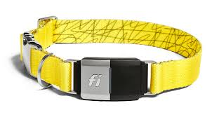Fi Dog Collar Review Some Interesting Ideas But Leaves A Lot To Be Desired The Verge