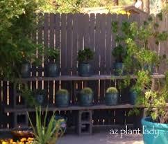Got A Bare Fence Create A Diy Plant Shelf Birds And Blooms Plant Shelves Diy Plants Plants