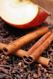 homemade natural air fresheners for the