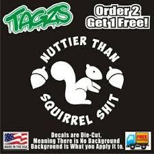 Nuttier Than Squirrel S T Funny Diecut Vinyl Window Decal Sticker Car Truck Jdm Ebay