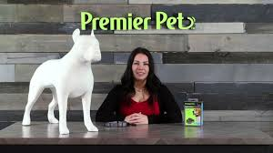 How To Fit The Premier Pet Bark Collar Youtube
