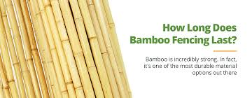 Protecting And Maintaining Your Bamboo Bamboo Fencing Stain Tips