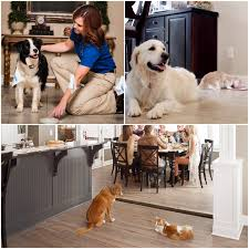 Pet Avoidance Solutions Invisible Fence