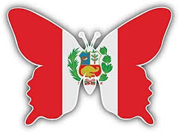 Amazon Com Dg Graphics Peru Flag Butterfly Art Decor 5 X 4 Vinyl Decal Sticker Wall Window Any Smooth Surface Home Kitchen