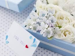 صور ورود حب بيضاء Love White Rose صور ورد وزهور Rose Flower Images