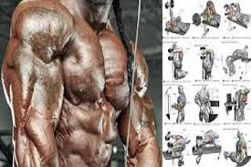 6 best triceps workouts for men 1st
