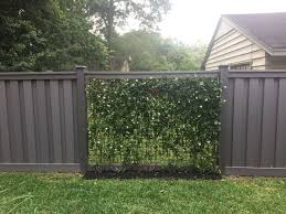 Vines Growing On Wire Mesh Panels With Winchester Grey Trex Fencing